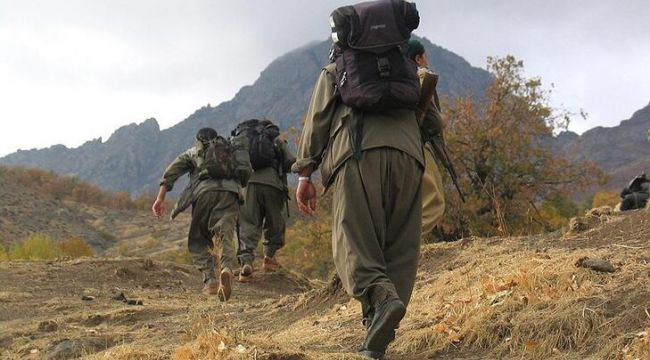 PKK'ya bir şok daha! Çağrıları karşılık bulmadı