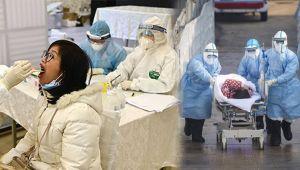 Koronavirüsle mücadelede neden bazı ülkeler başarılı olurken bazıları ise başarısız oldu?