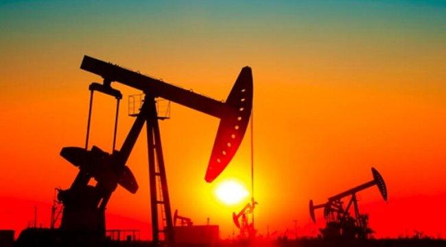 Türkiye Sigorta enerjideki payını artırdı