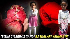 Minik Saliha'nın ölüm nedeni kesinleşti! 'Nar' katili oldu